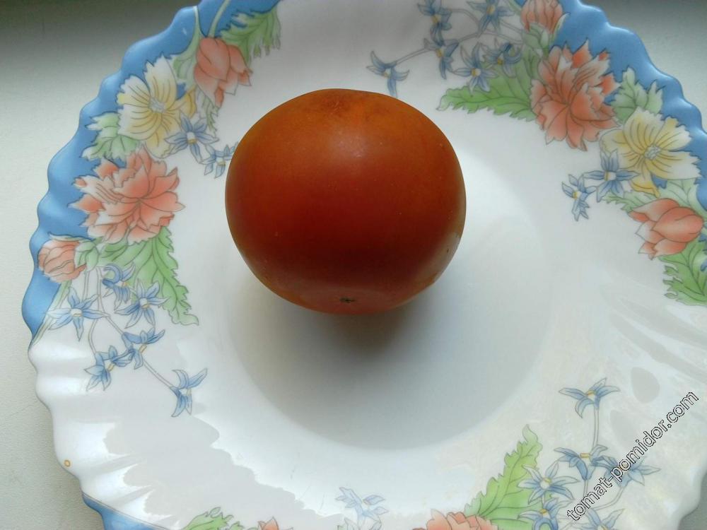 помидор 1