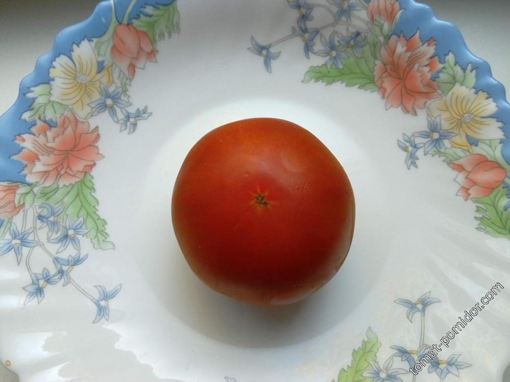помидор 2