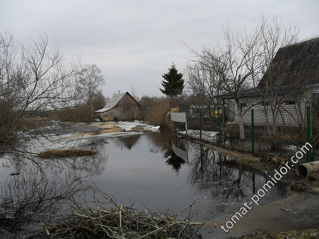 Полововодье 2010 года, вода у дома
