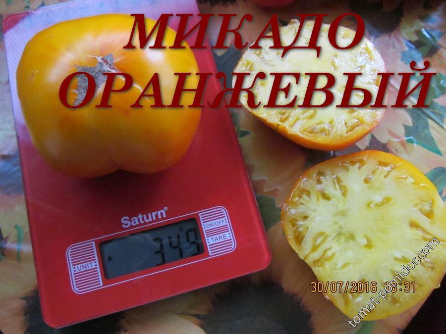 Микадо оранжевый