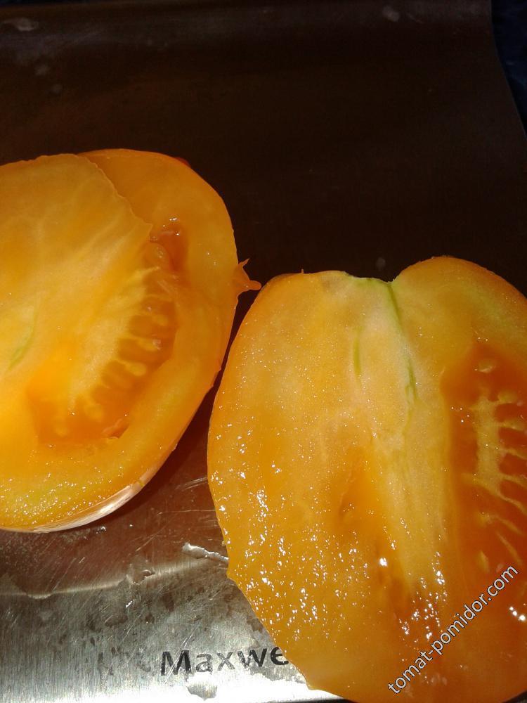 Пан-томат