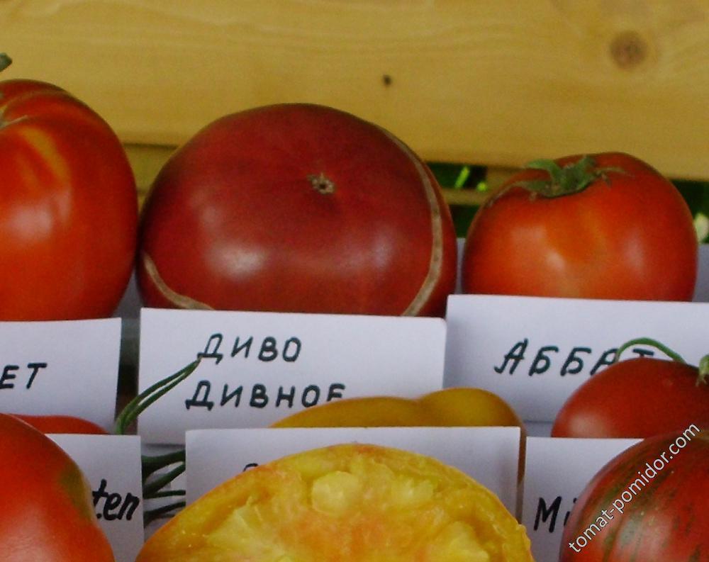 самый вкусный помидор