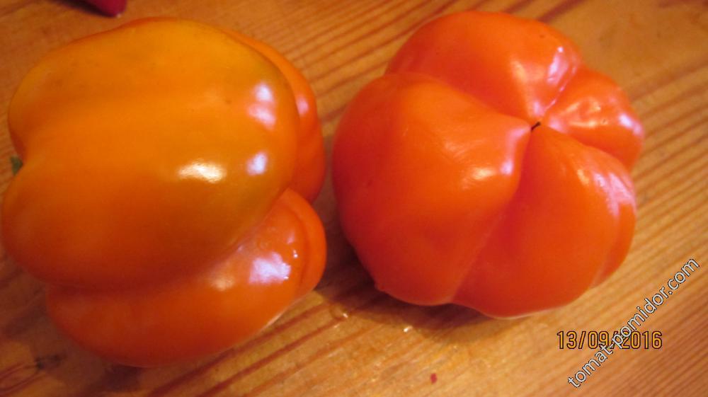 Оранжевое чудо