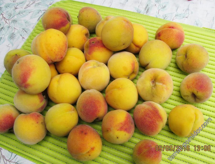 Персики... Когда ещё...