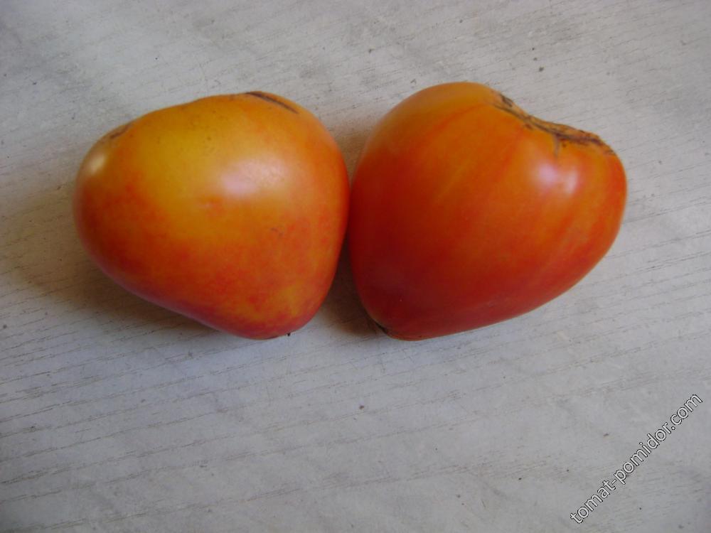 Деревенский (лист обычный)