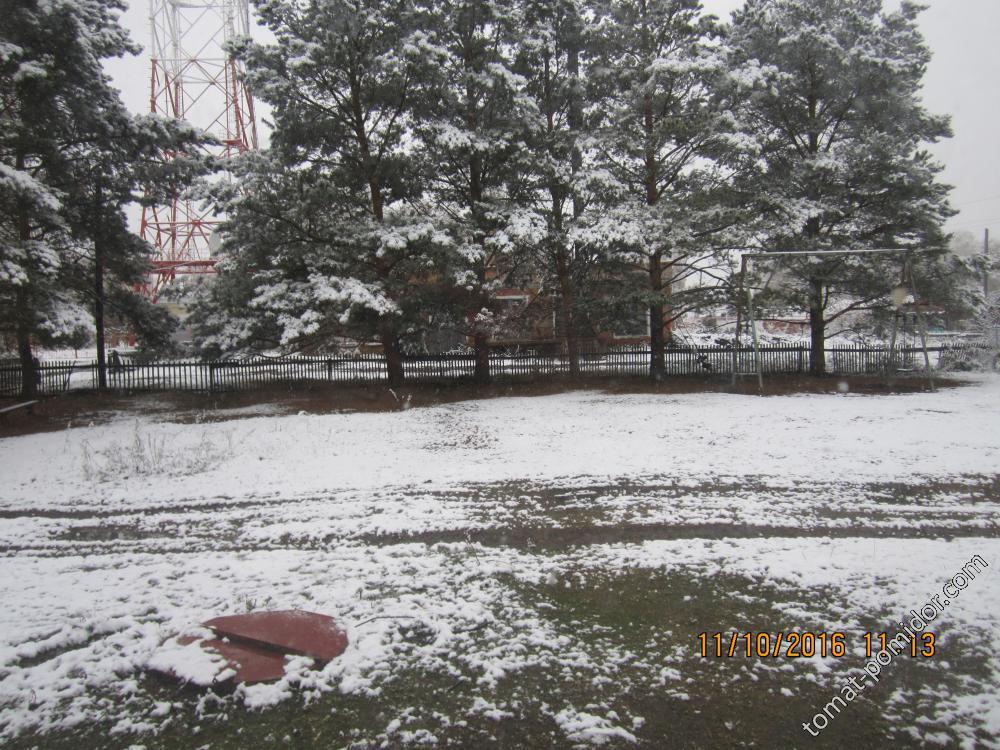 Первый снежный покров