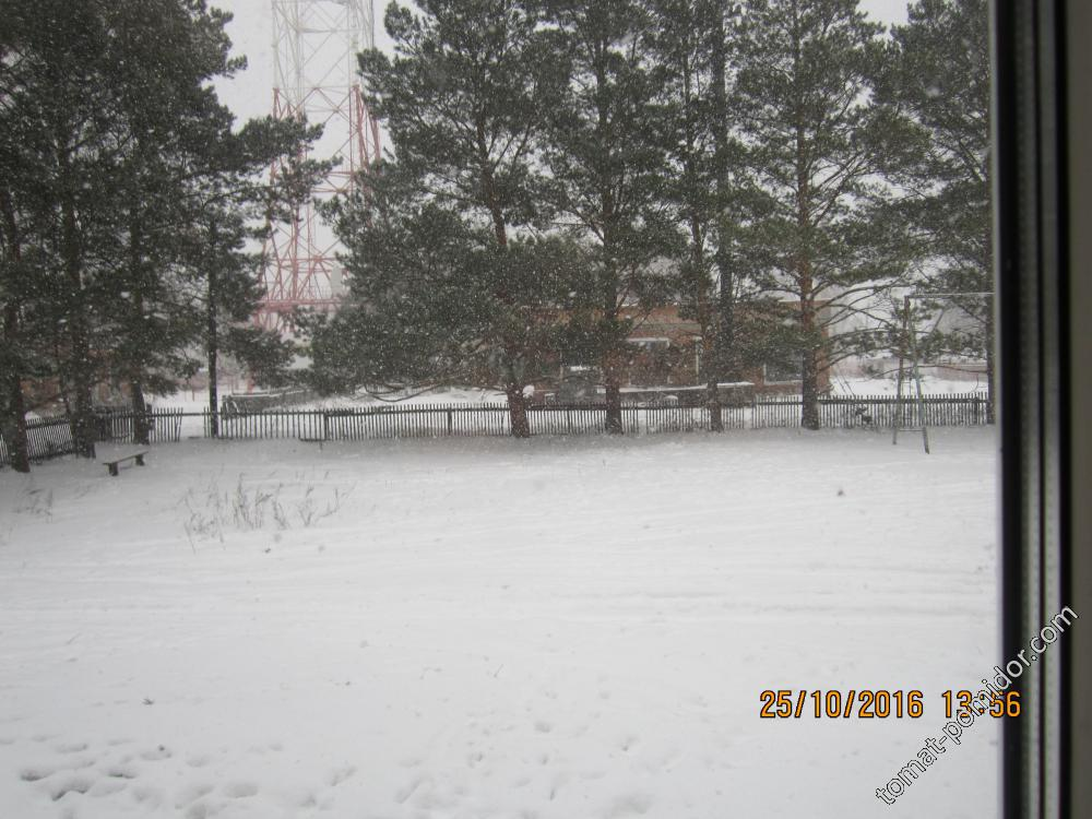 А снег идёт...........