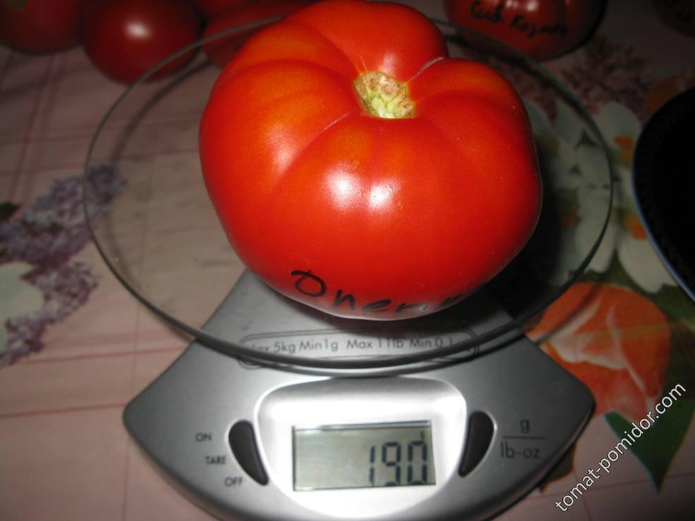 OLEAR'S GERMAN-вес
