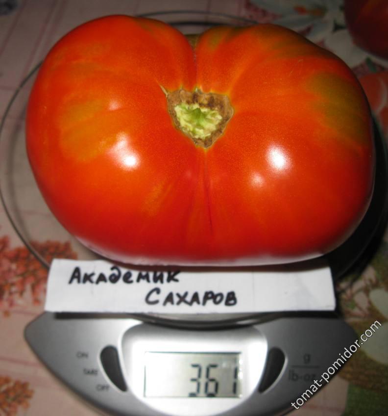 Академик Сахаров-вес