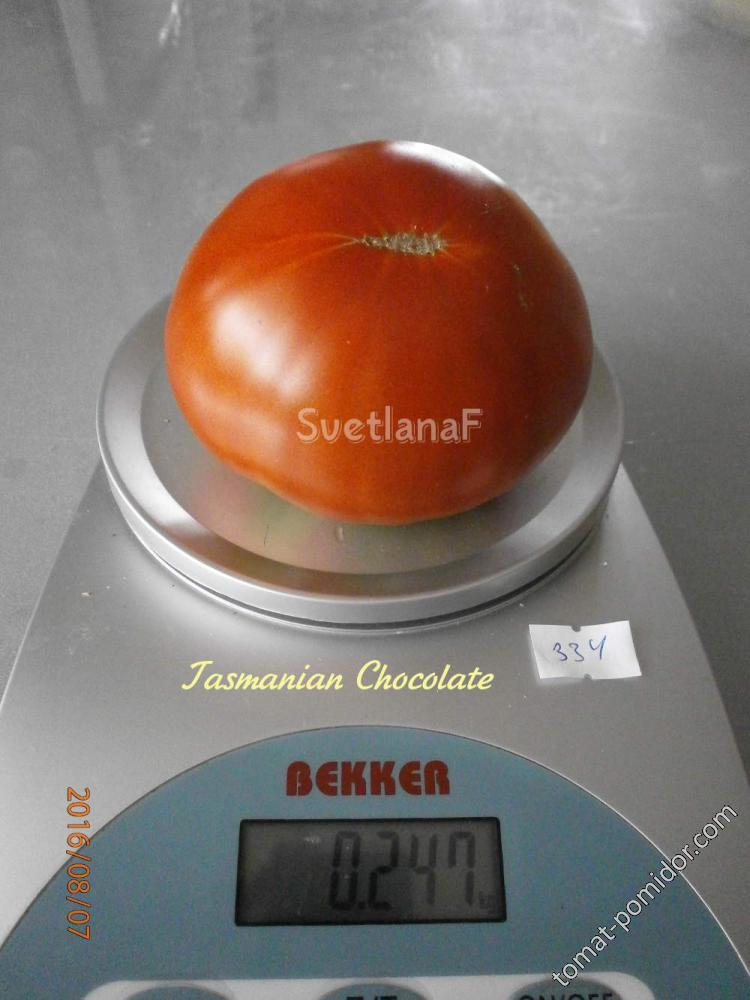 Тасманский шоколад