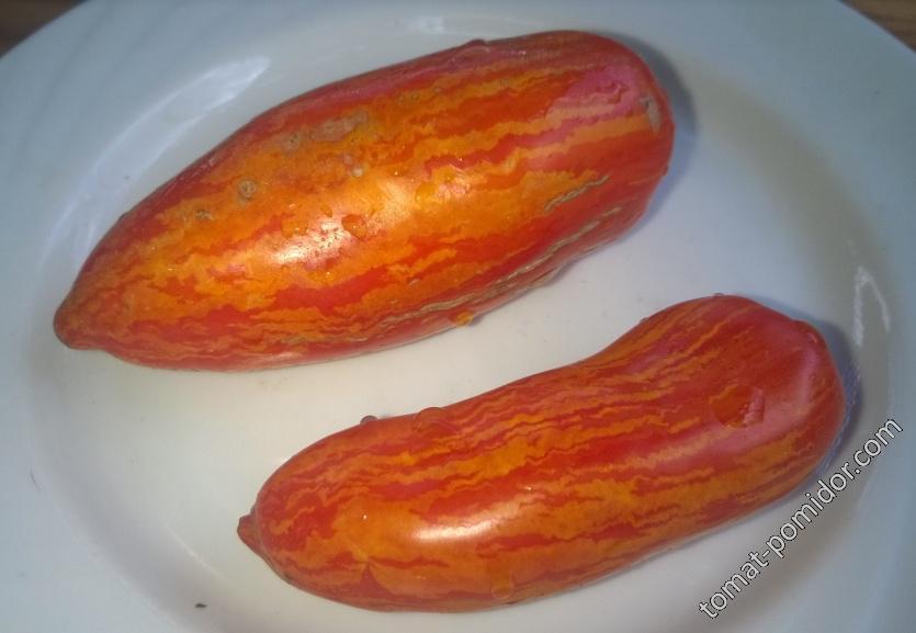 Томат Джалпа: описание и характеристика сорта, отзывы об урожайности помидоров, фото куста || Томат джалпа