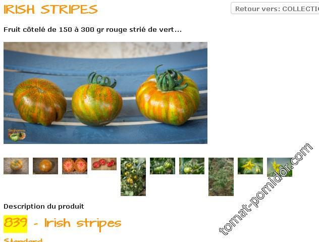Irish Stripes