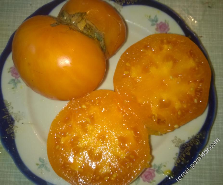 Оранжевая ягода-1
