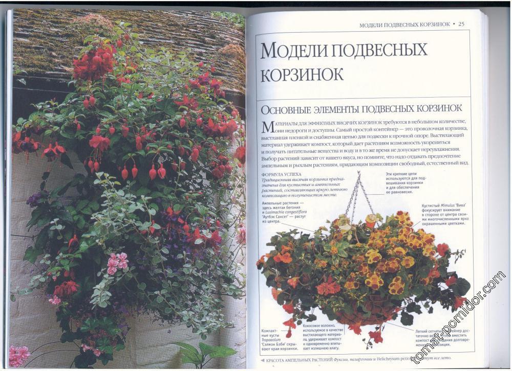 стр.24-25
