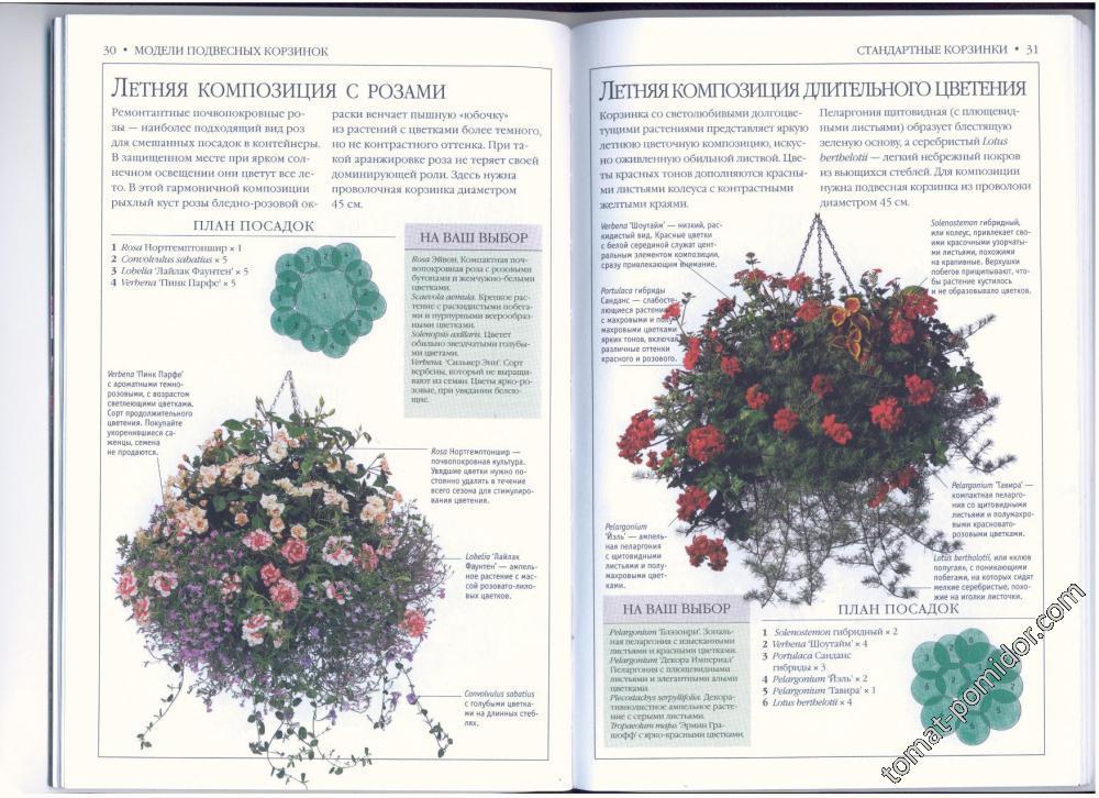 стр.30-31