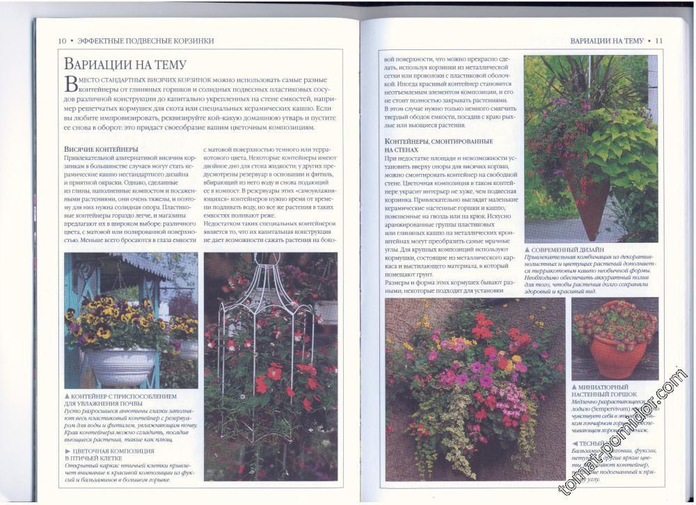стр 10-11