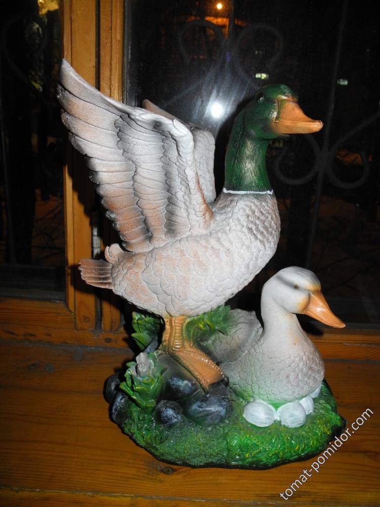 Птички для прудика