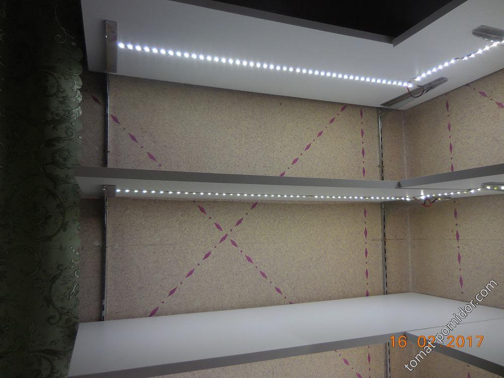 Новая светлая квартирка для растюшек