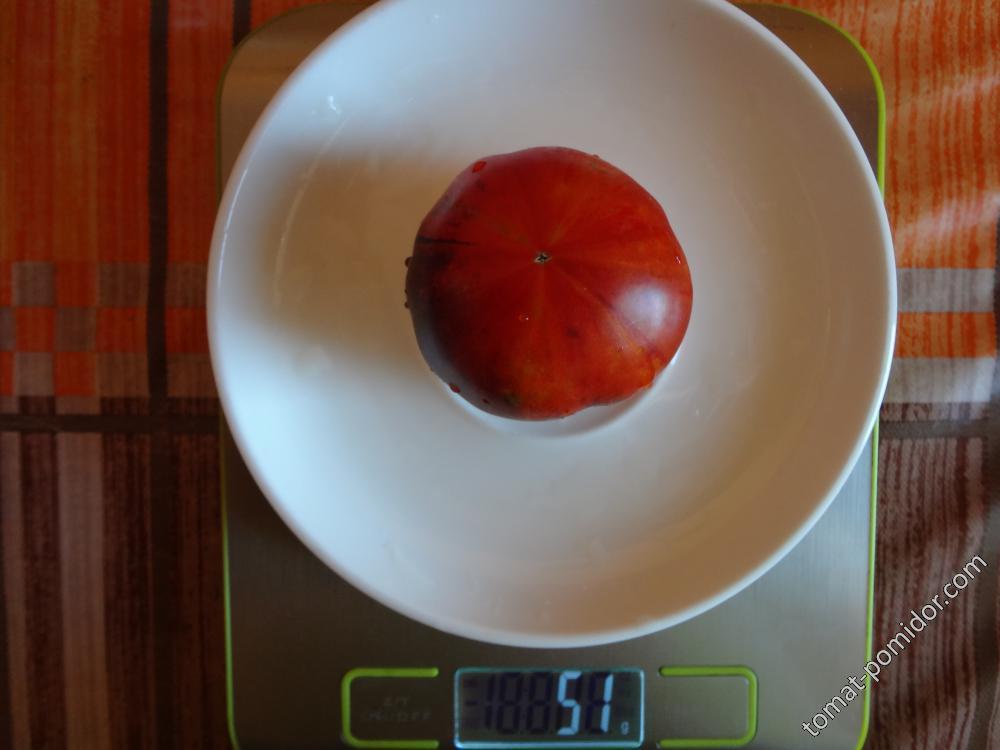 гном Полосатый Анто вес