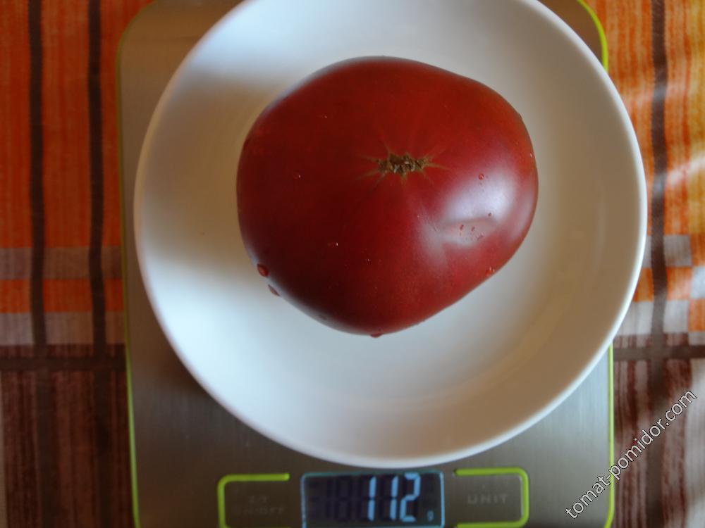 Циндао вес