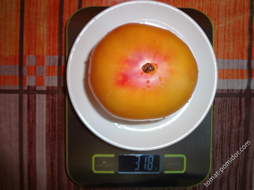 гном Апельсиновый крем вес