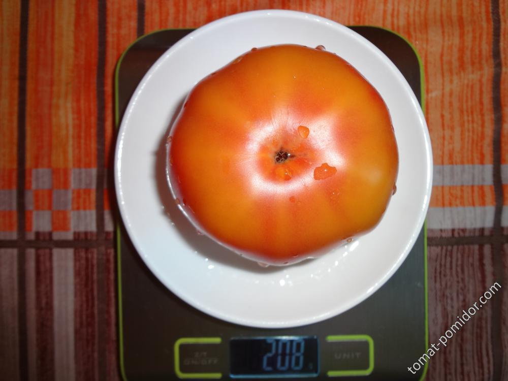 Еллоустоун вес