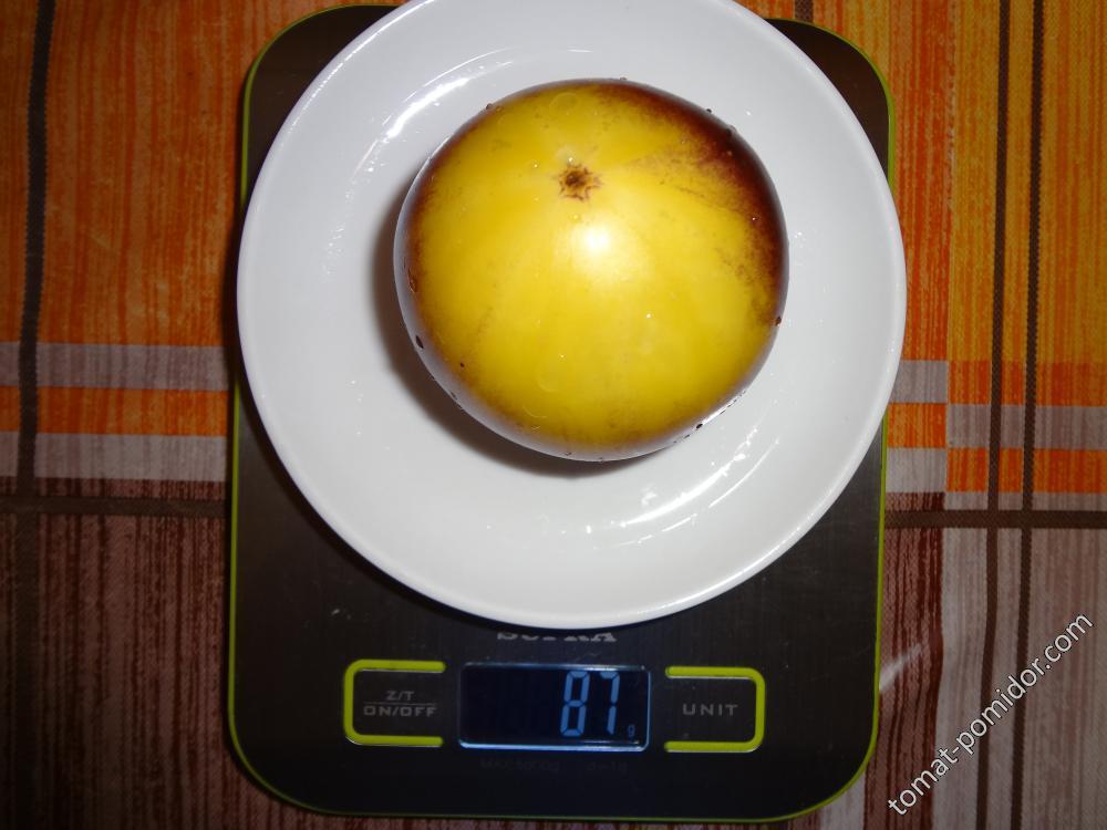 Большой бело-синий (Great White P20) вес