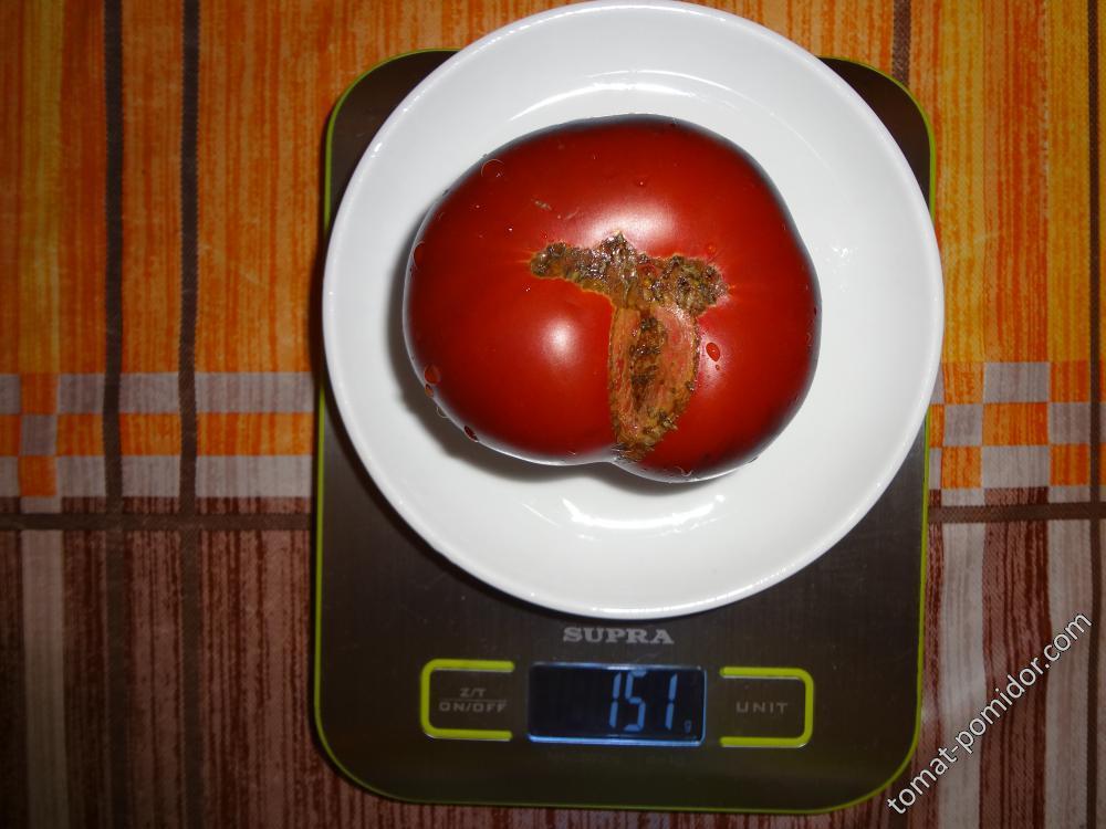 П20 + Бьюти кинг вес