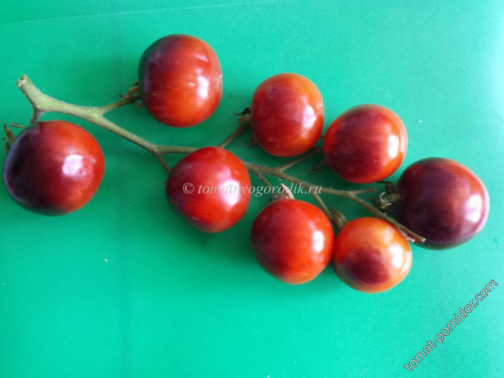 Черная гроздь