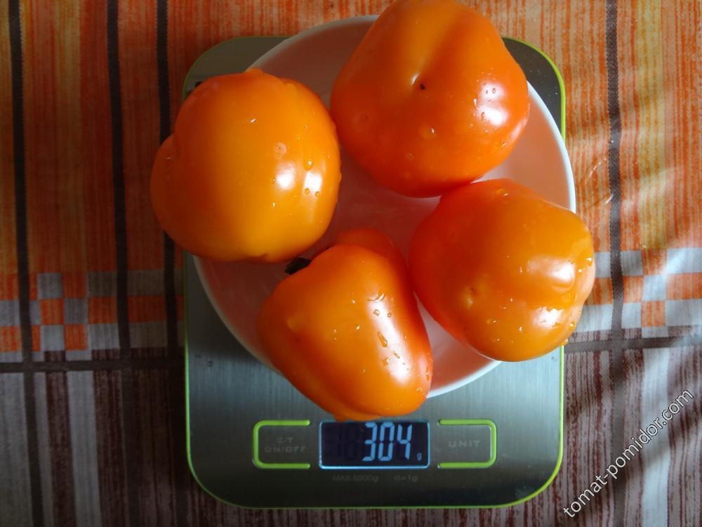 Дуе хилл вес