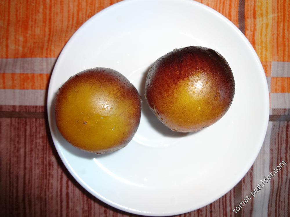 Золотая лесная яблоня