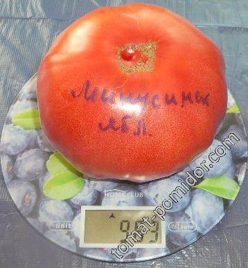 томаты 2017