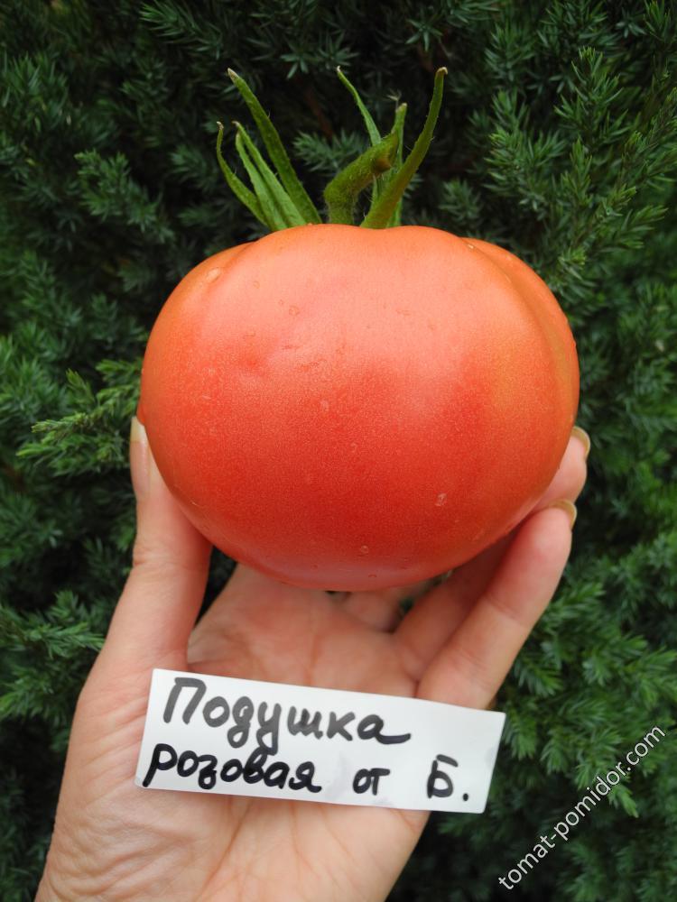 Подушка розовая от Борисовны