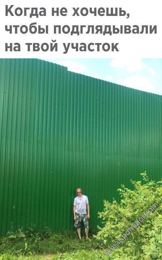 Заборчик ))))))