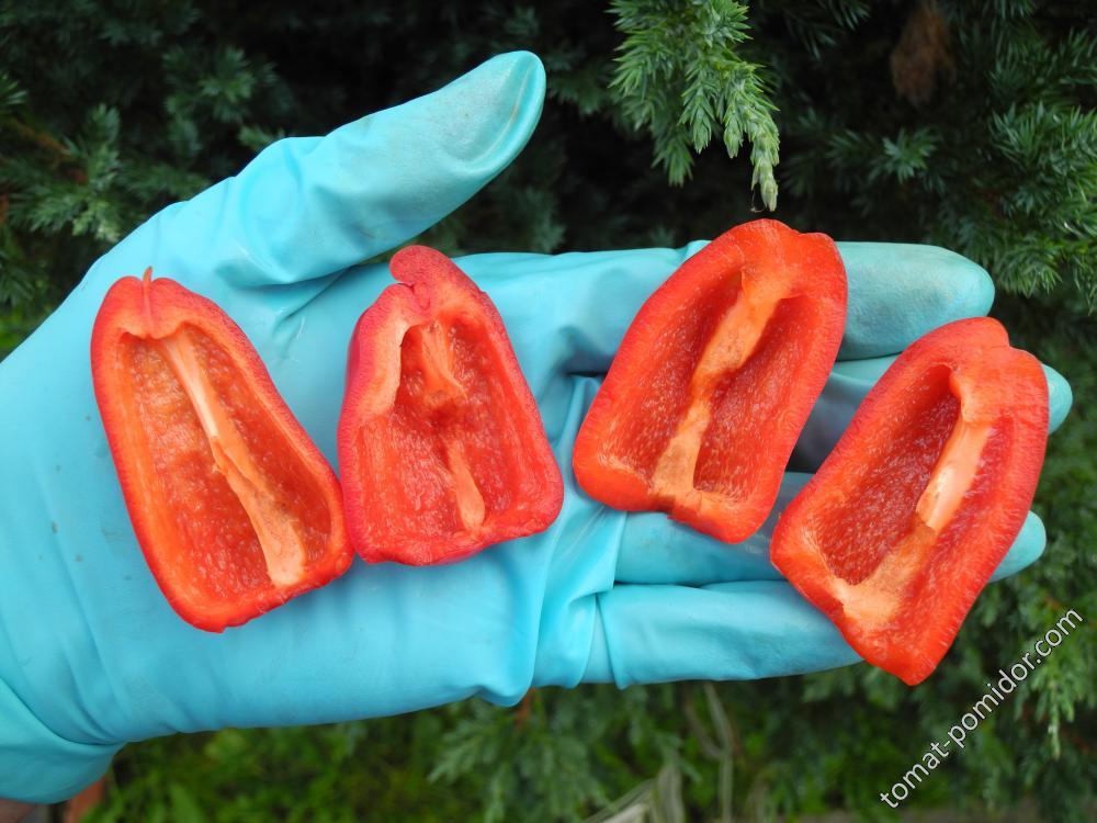 Острый перец Дамско сердце от ЛаныД (Болгария)