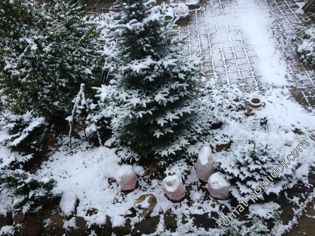 Первый снег 17 года