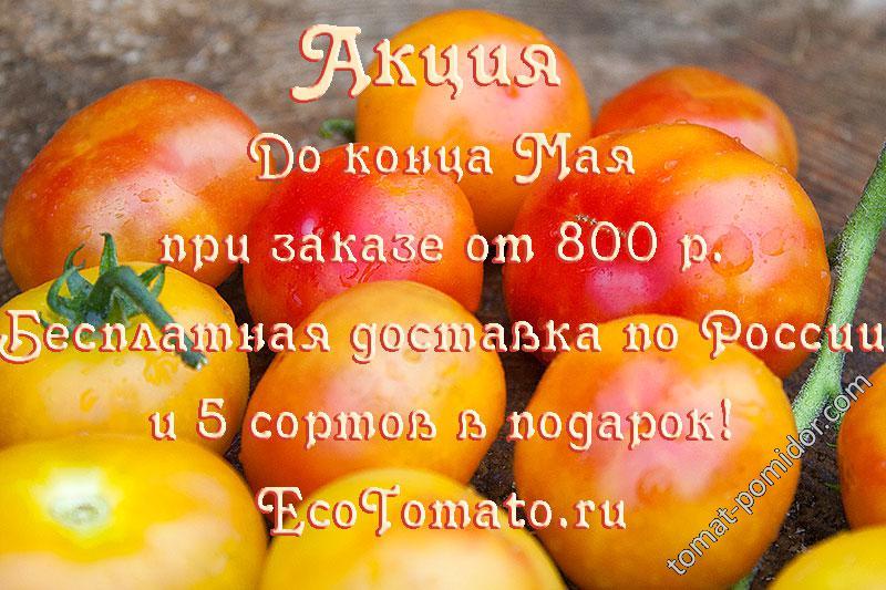 Акция в Мае на ecotomato.ru