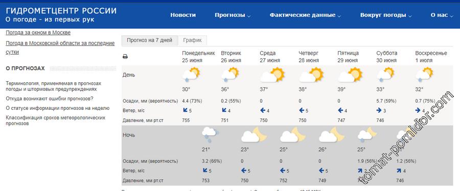 Погода под конец июня