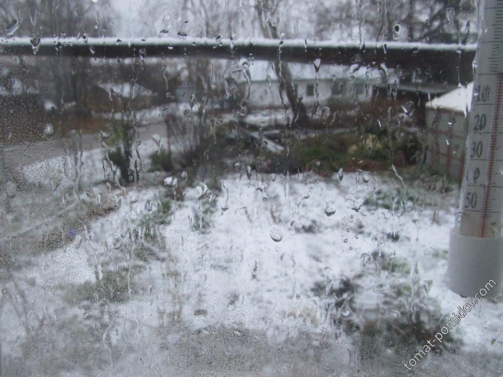 Первый снег из окна )