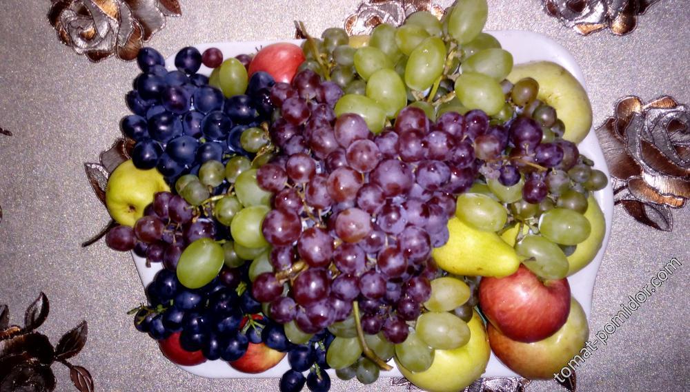 Виноградная сказка