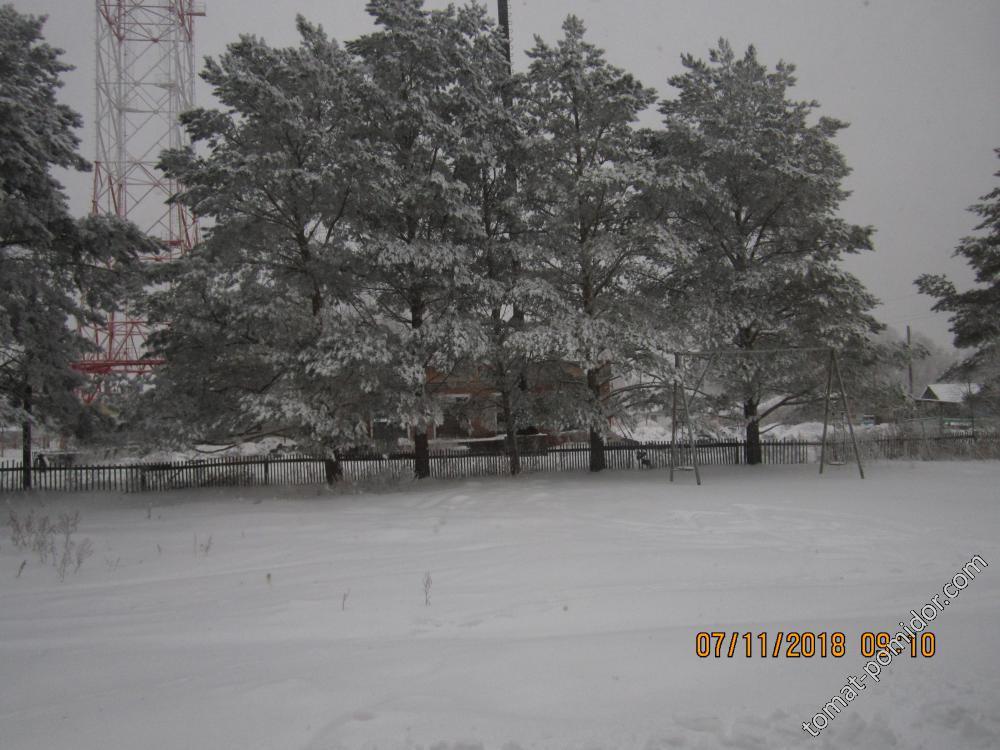 Вот и зима пришла в наши края.