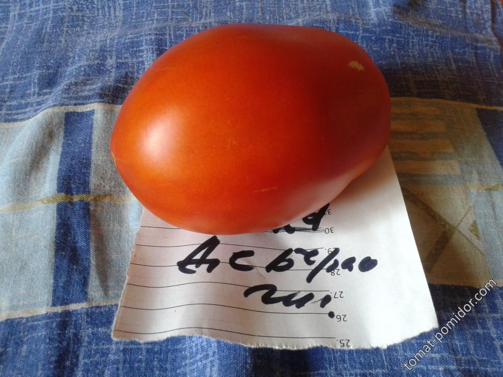 Прикамские томаты