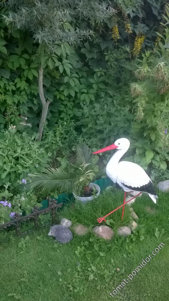 уголок в саду