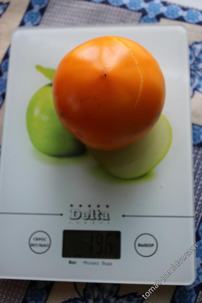 Оранжевый гигант