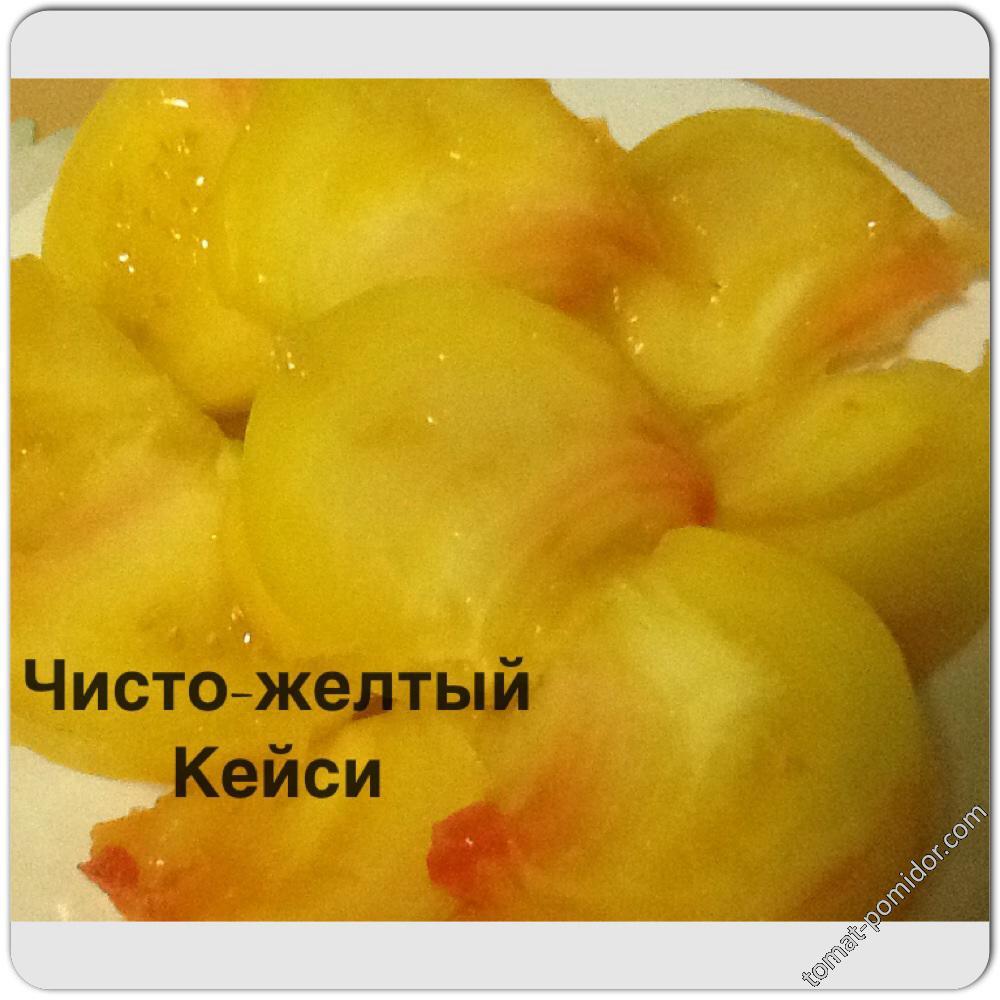 Чисто-желтый Кейси