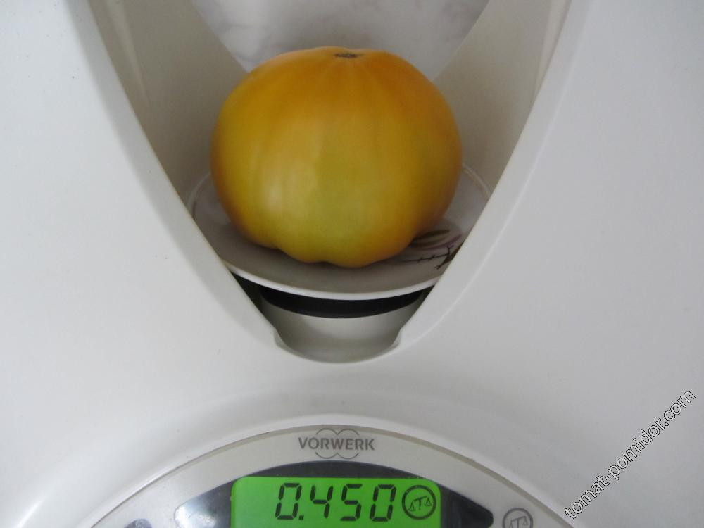 Клубника оранжевая 03.08