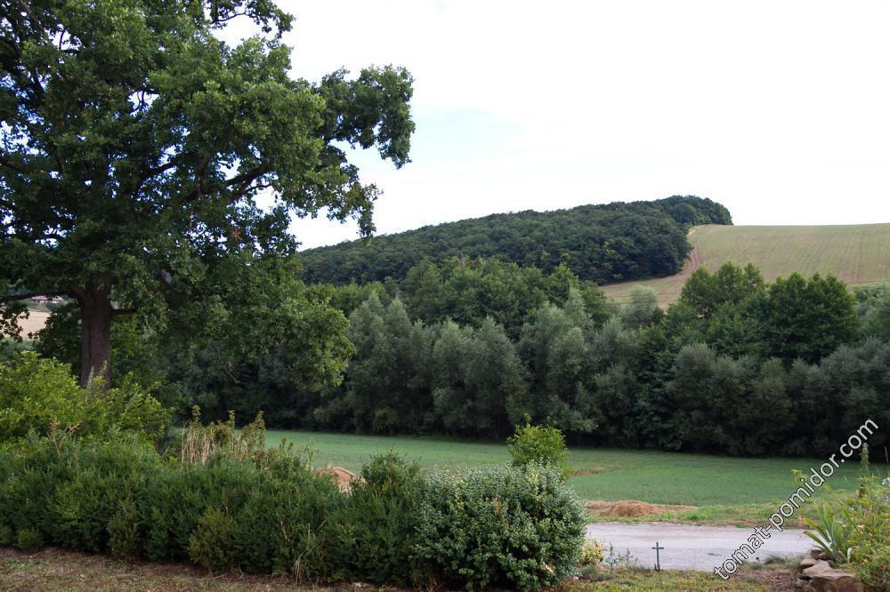 Пейзаж из окна нашего дома