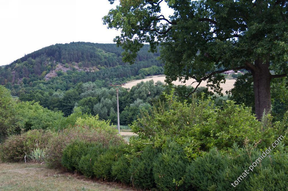 Пейзаж из окна 2