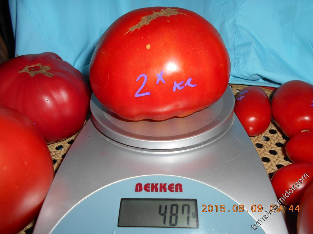 2-х килограммовый