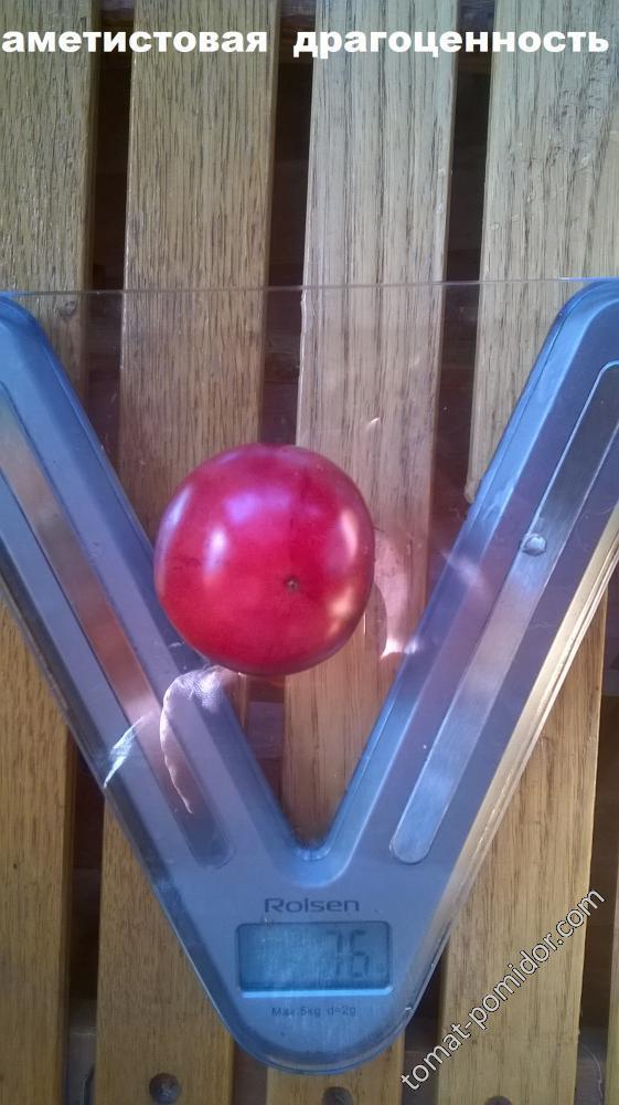 помидоры Натальи Курниковой